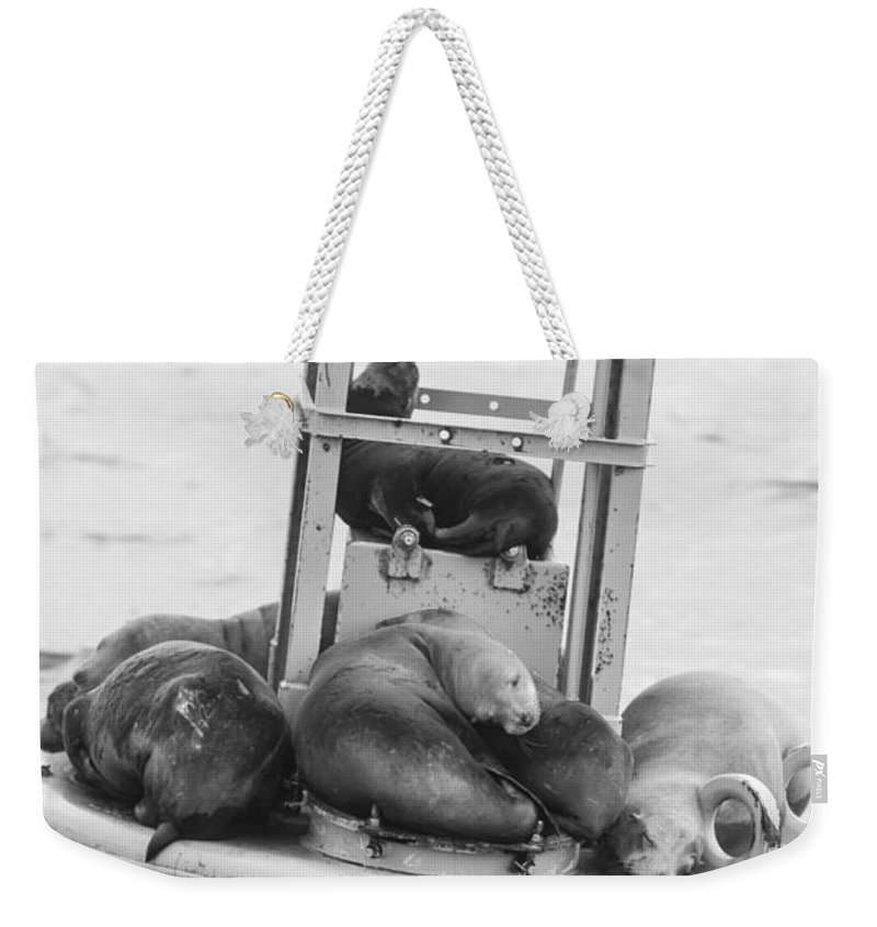 Seal Weekender Tote Bag featuring the photograph Pit Stop Black And White by Scott Campbell