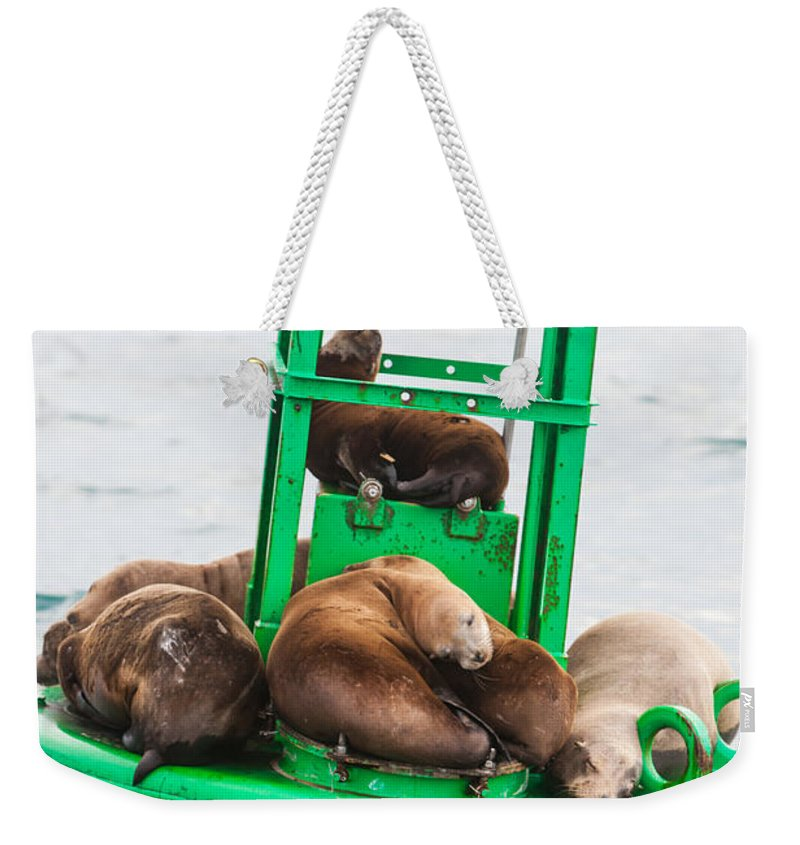 Seal Weekender Tote Bag featuring the photograph Pit Stop by Scott Campbell