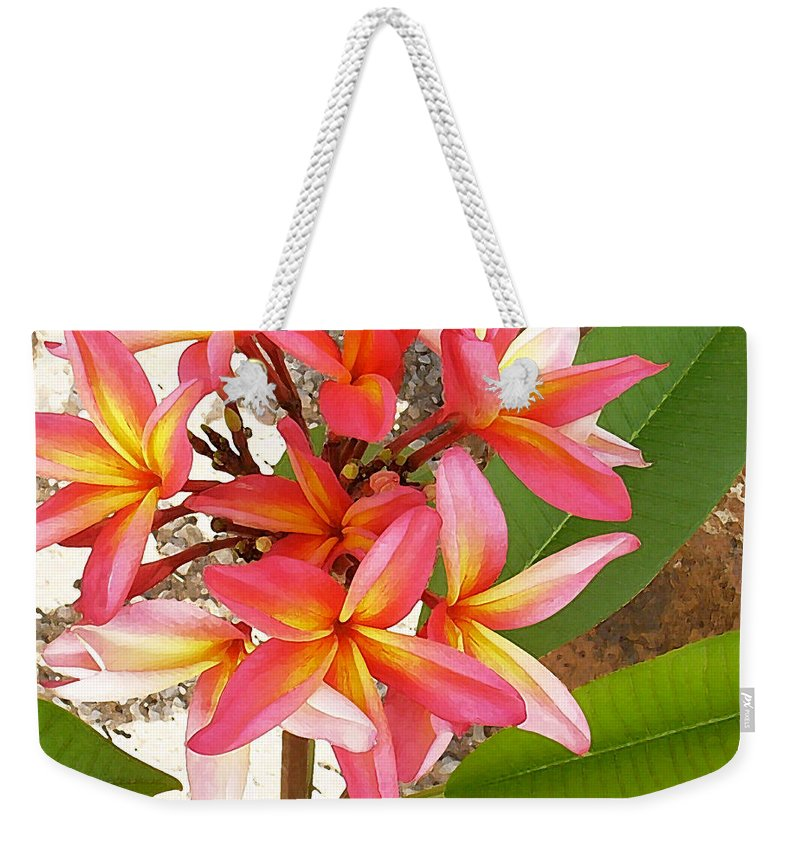 Hawaii Iphone Cases Weekender Tote Bag featuring the photograph Plantation Plumeria by James Temple