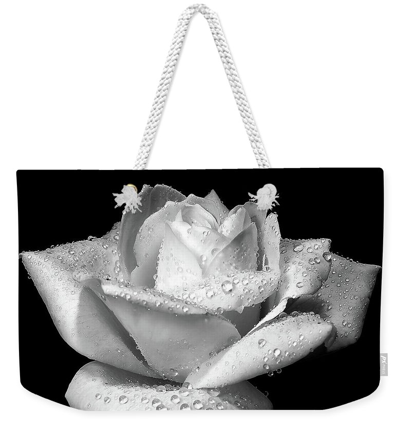 Rose Weekender Tote Bag featuring the photograph Platinum Rose Flower by Jennie Marie Schell