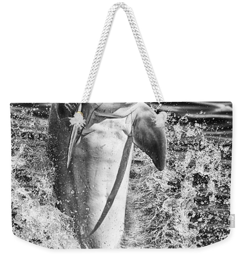 Dolphin Weekender Tote Bag featuring the photograph Playful Black And White by Douglas Barnard