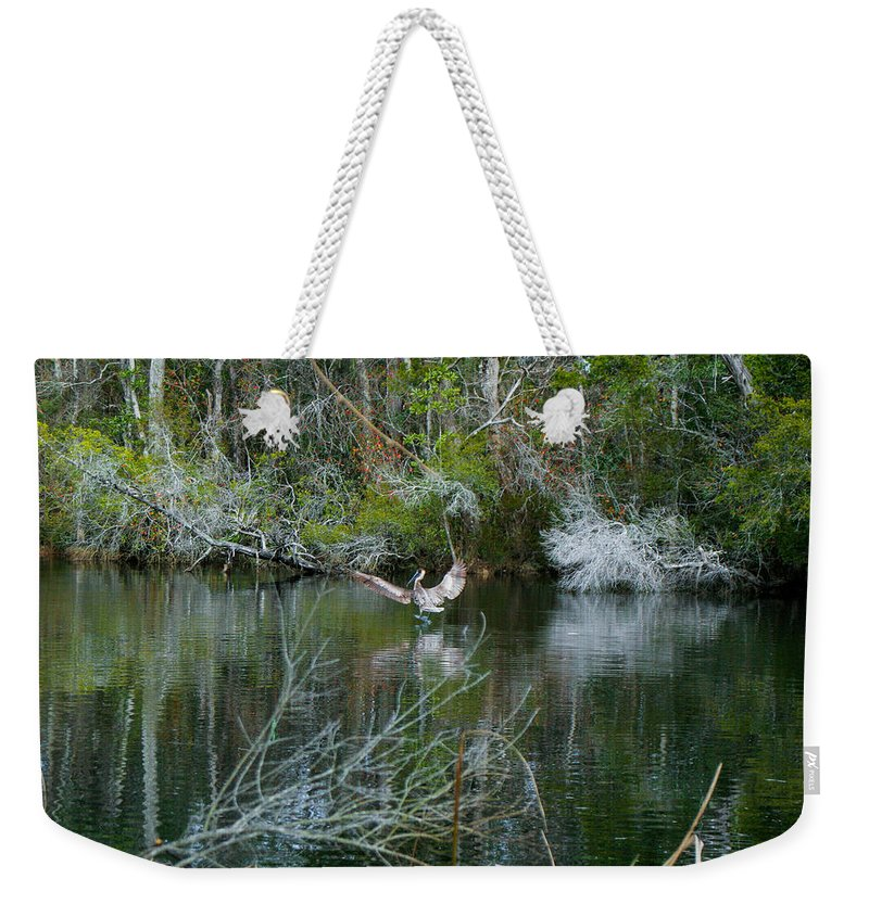 Pelican Weekender Tote Bag featuring the photograph Playful Pelican by Mechala Matthews