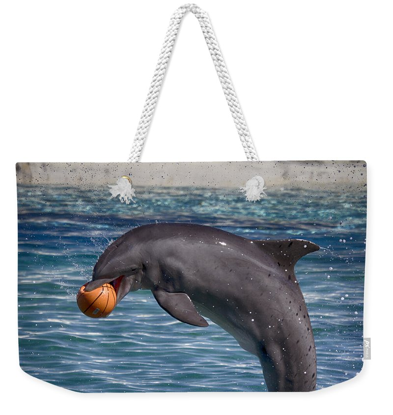 Dolphin Weekender Tote Bag featuring the photograph Playful V9 by Douglas Barnard