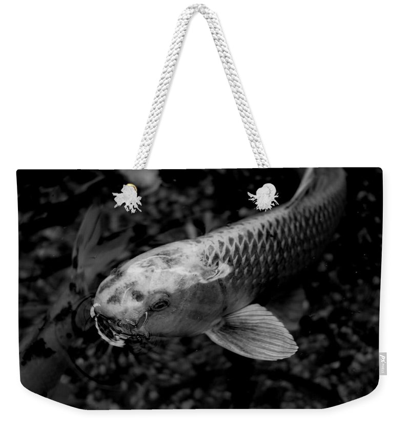 Koi Fish Weekender Tote Bag featuring the photograph Playing Koi by Scott Hill