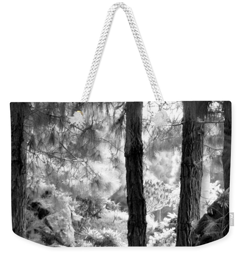Las Palmas Weekender Tote Bag featuring the photograph Plaza Matias Vega by Tracy Winter