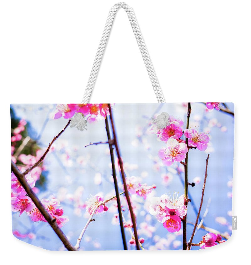 Plum Weekender Tote Bag featuring the photograph Plum Blossoms In Bloom by Marser