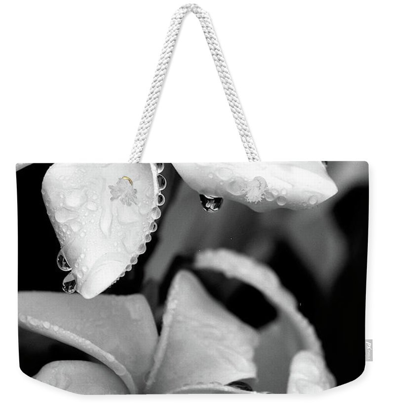 Black & White Weekender Tote Bag featuring the photograph Plumeria Drip by Peter Tellone