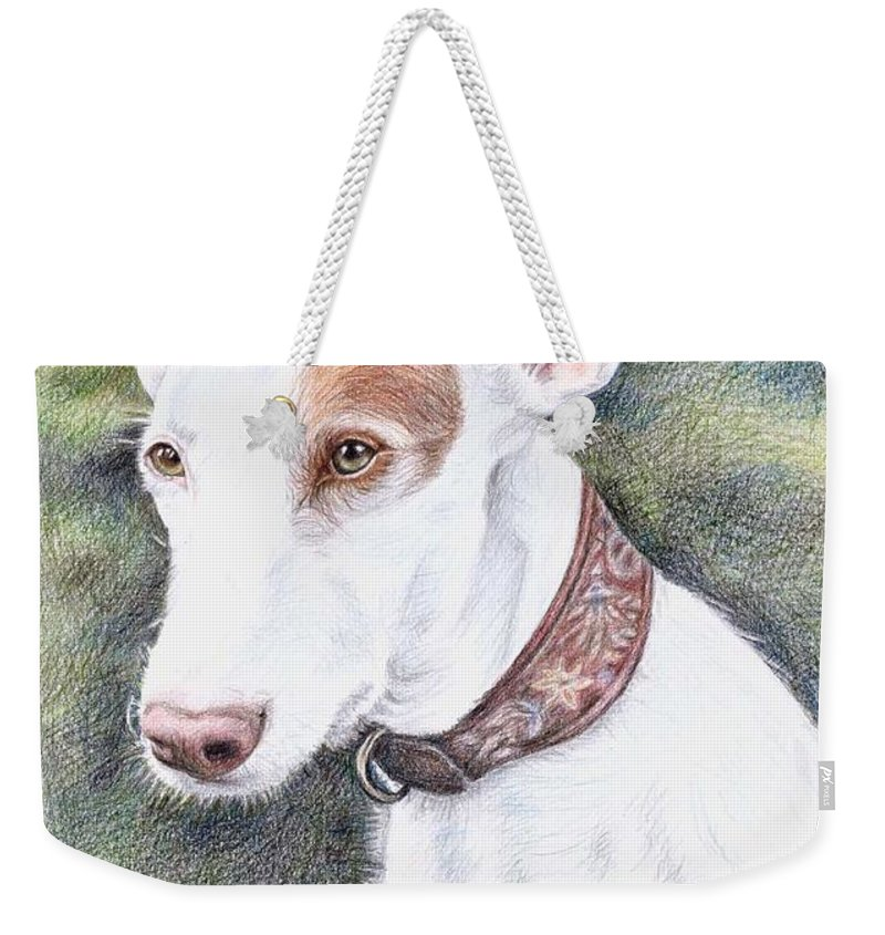 Dog Weekender Tote Bag featuring the drawing Podenco Ibicenco by Nicole Zeug