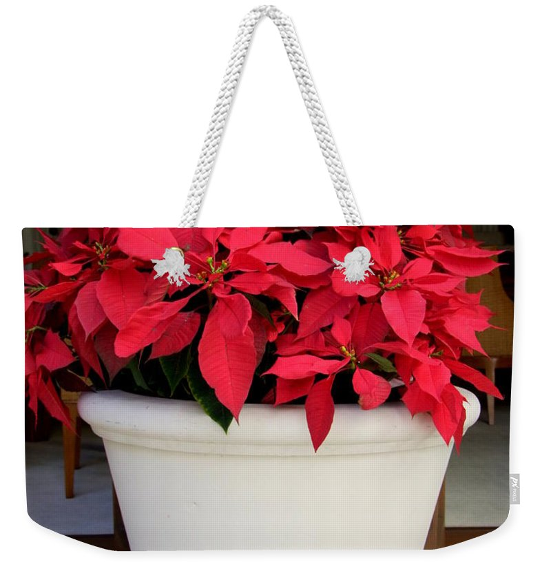 Poinsettia Weekender Tote Bag featuring the photograph Poinsettias In A Planter by Mary Deal