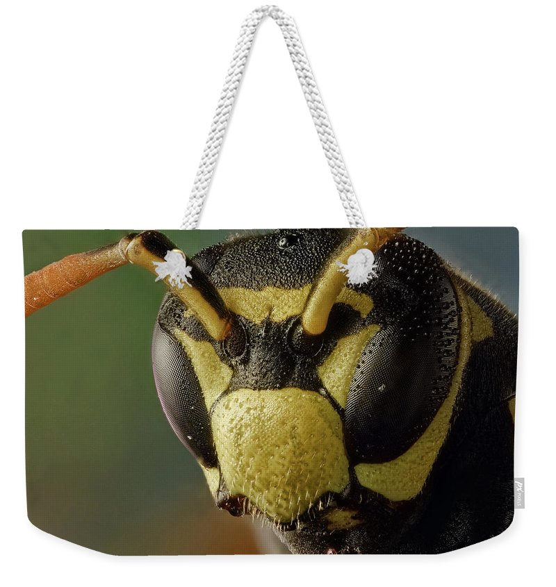 Focus Stacking Weekender Tote Bag featuring the photograph Polistes Dominula 41 by Javier Torrent - Vwpics