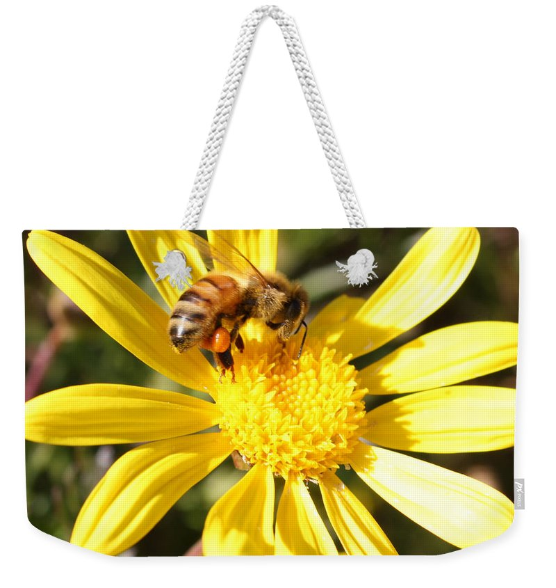 Bee Weekender Tote Bag featuring the photograph Pollen-laden Bee On Yellow Daisy by Carol Groenen