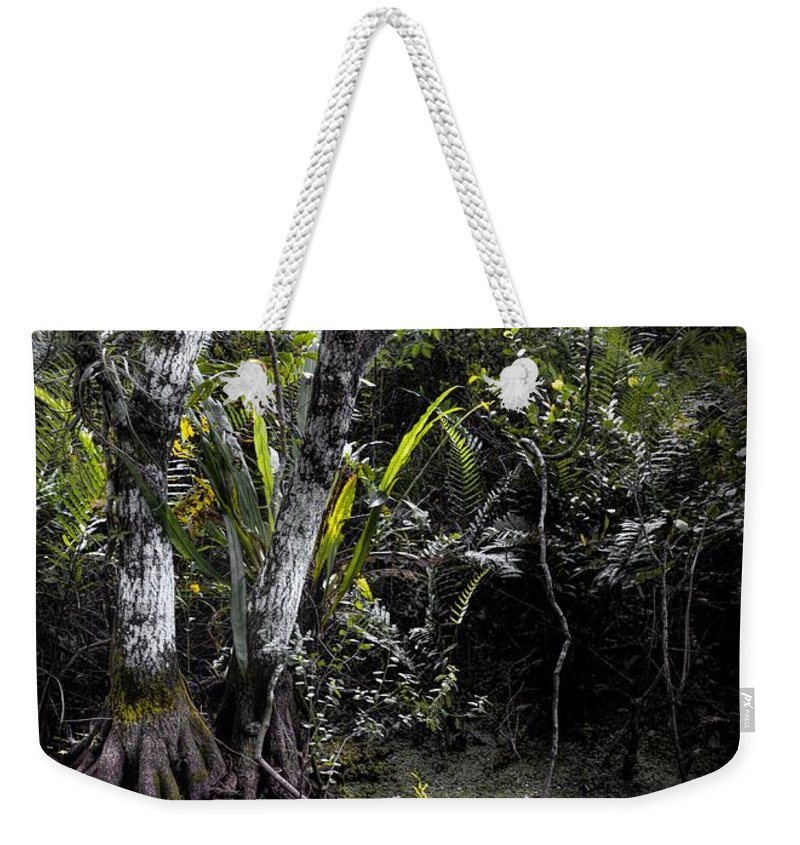 Arthur R. Marshall Weekender Tote Bag featuring the photograph Pond Apple by Rudy Umans