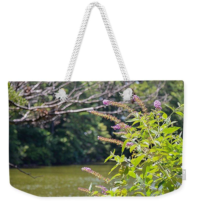 Pond Weekender Tote Bag featuring the painting Pond At Norfolk Botanical Garden 12 by Jeelan Clark