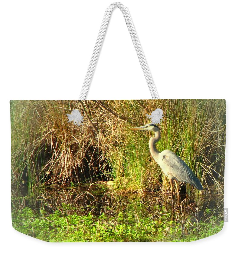 Bird Weekender Tote Bag featuring the photograph Pond Wildlife by Joyce Dickens