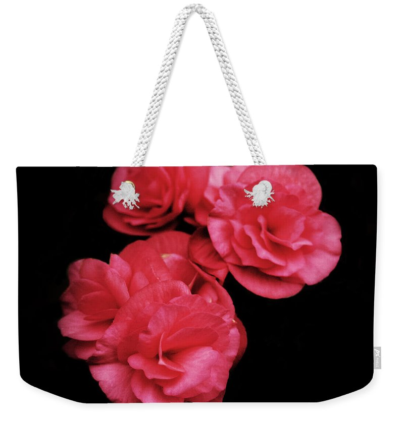 Pop Of Pink Weekender Tote Bag featuring the photograph Pop Of Pink by Michael Porchik