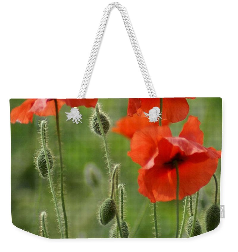 Poppies Weekender Tote Bag featuring the photograph Poppies 2 by Carol Lynch
