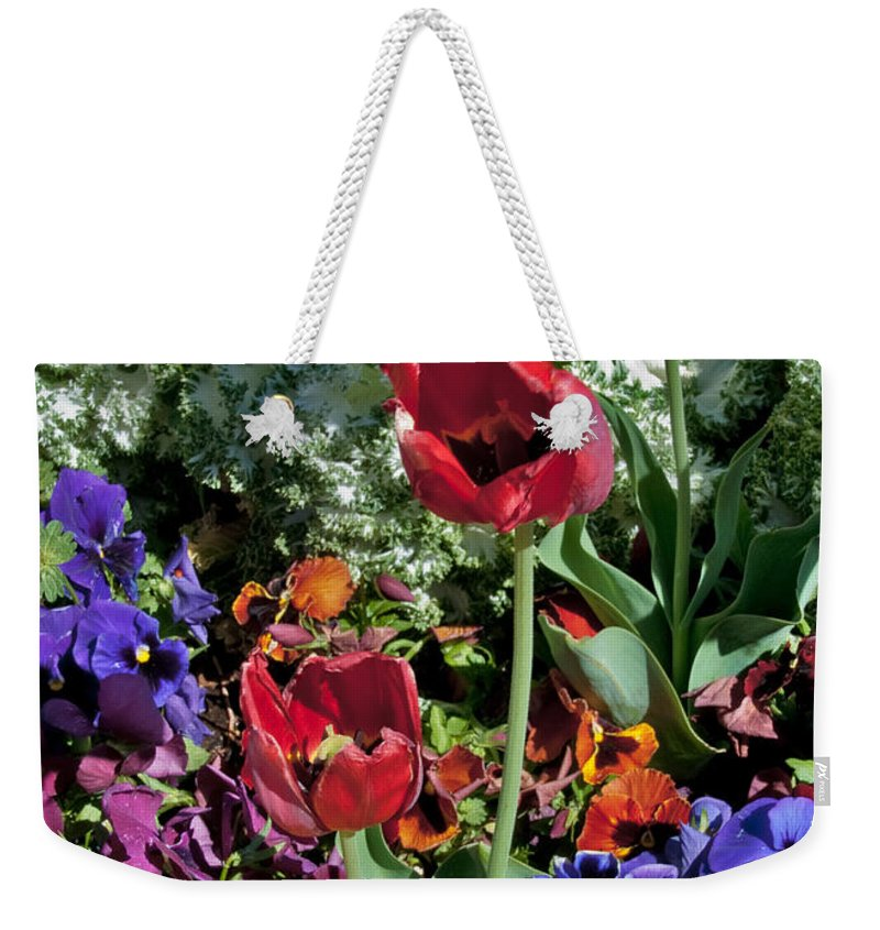 Poppies Planted On The Texas Tech Campus Weekender Tote Bag featuring the photograph Poppies by Mae Wertz