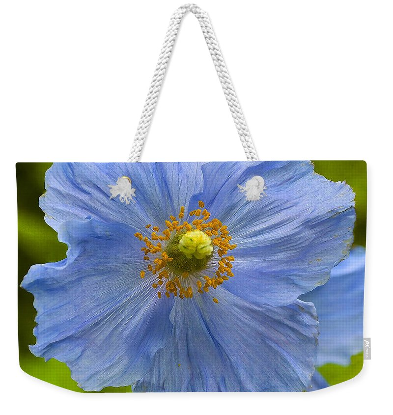 Poppy Weekender Tote Bag featuring the photograph Poppy 6 by Ingrid Smith-Johnsen