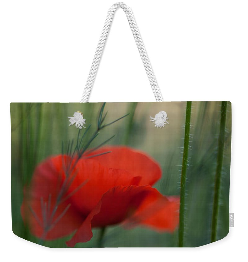 Flower Weekender Tote Bag featuring the photograph Poppy Abstract by Mike Reid