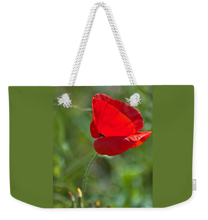 Bloom Weekender Tote Bag featuring the photograph Poppy Blowing In The Wind by Jill Mitchell