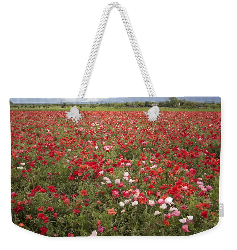 Bloom Weekender Tote Bag featuring the photograph Poppy Field by David and Carol Kelly
