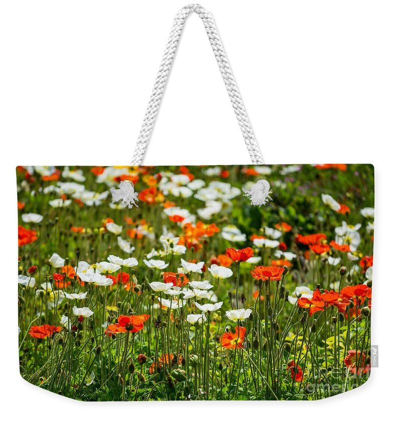 Poppy Field Weekender Tote Bag featuring the photograph Poppy Fields - Beautiful Field Of Spring Poppy Flowers In Bloom. by Jamie Pham