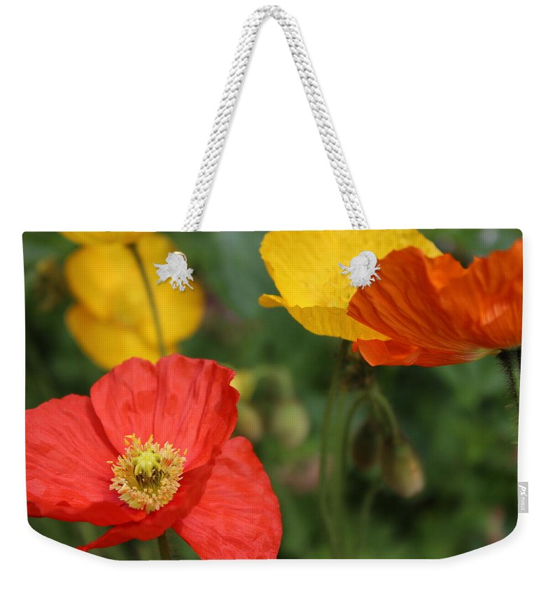 Poppy Weekender Tote Bag featuring the photograph Poppy Iv by Tiffany Erdman