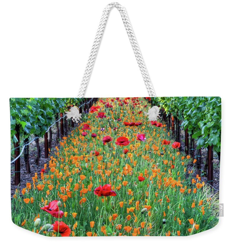 Tranquility Weekender Tote Bag featuring the photograph Poppy Lined Vineyard by Rmb Images / Photography By Robert Bowman