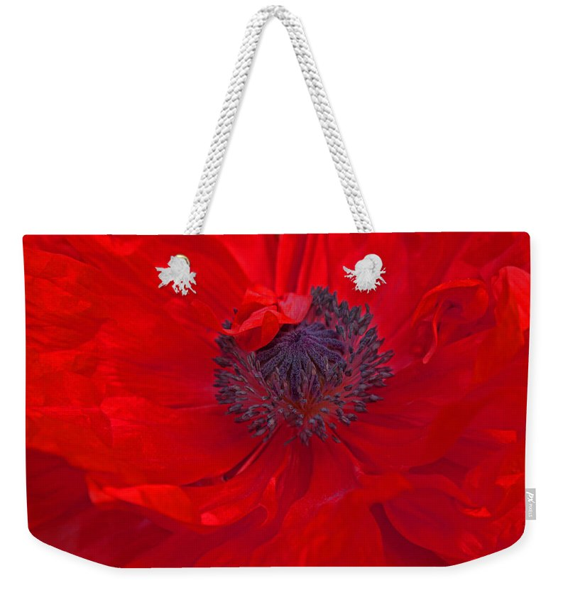 Poppy Weekender Tote Bag featuring the photograph Poppy - Red Envy by Joanne Smoley