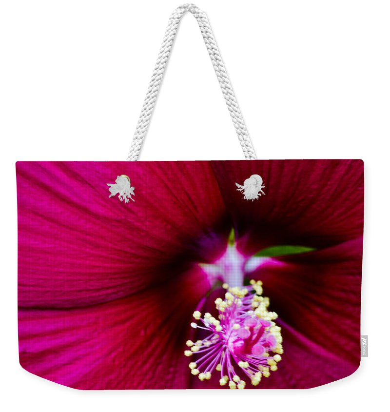 Poppy Weekender Tote Bag featuring the photograph Poppy by Scott Hervieux