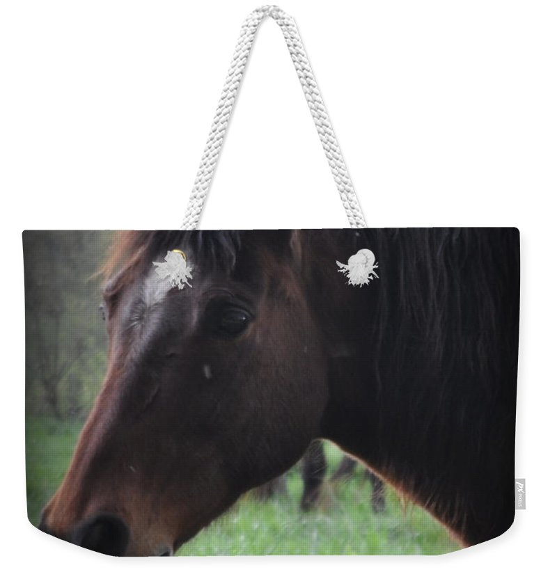 Horse Weekender Tote Bag featuring the photograph Portrait Of A Horse by Lydia Holly