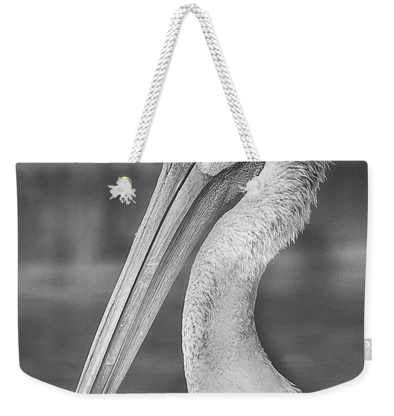 American White Pelican Weekender Tote Bag featuring the photograph Portrait Of A Pelican by Jon Woodhams