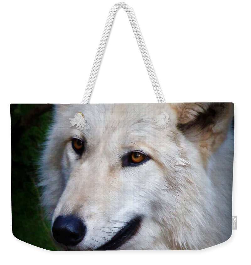 Wolves Weekender Tote Bag featuring the photograph Portrait Of A White Wolf by Athena Mckinzie