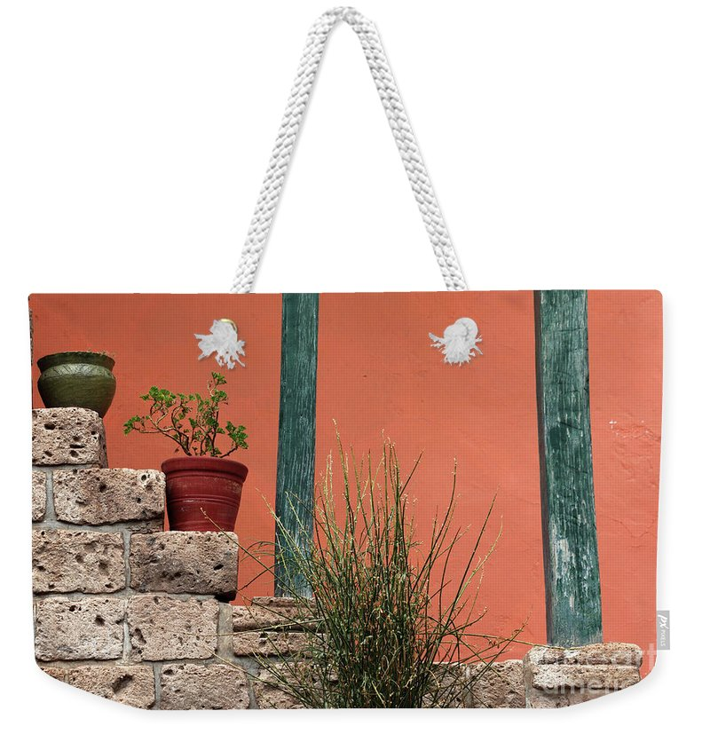 Pot Plant Weekender Tote Bag featuring the photograph Pot plants by James Brunker