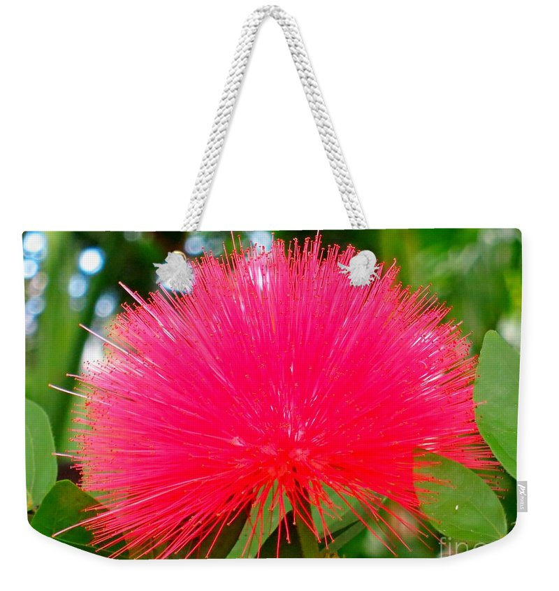Flower Weekender Tote Bag featuring the photograph Powder Puff by Lena Photo Art