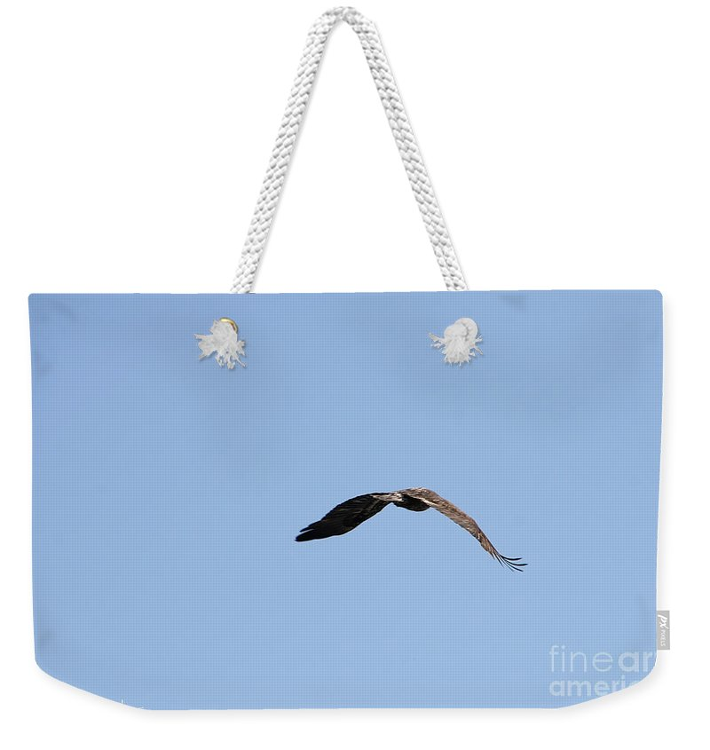 Outdoors Weekender Tote Bag featuring the photograph Power Flight by Susan Herber