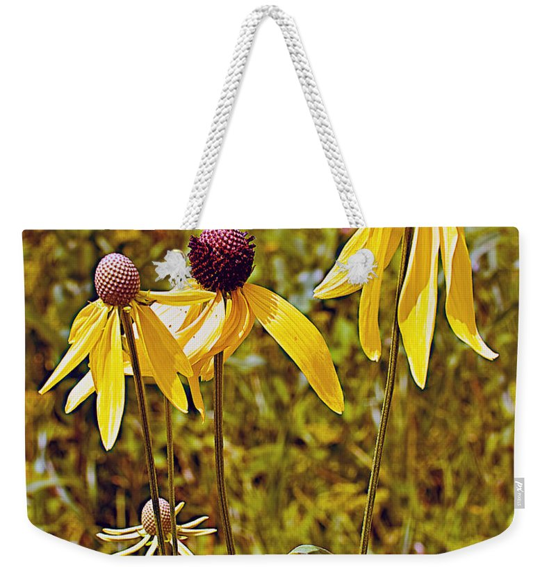 Prairie Coneflowers In Pipestone National Monument Weekender Tote Bag featuring the photograph Prairie Coneflowers In Pipestone National Monument-minnesota by Ruth Hager