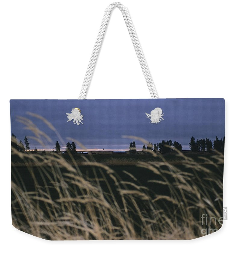 Prairie Weekender Tote Bag featuring the photograph Prairie Morning by Sharon Elliott
