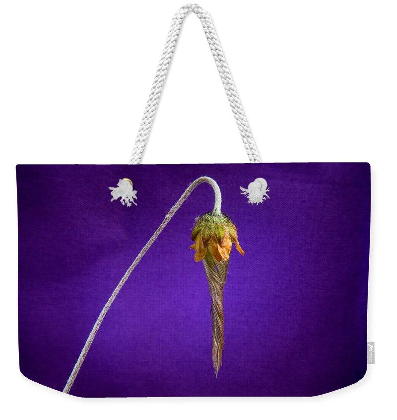 Alberta Weekender Tote Bag featuring the photograph Prairie Smoke Tightly Twirled Blossom by Douglas Barnett