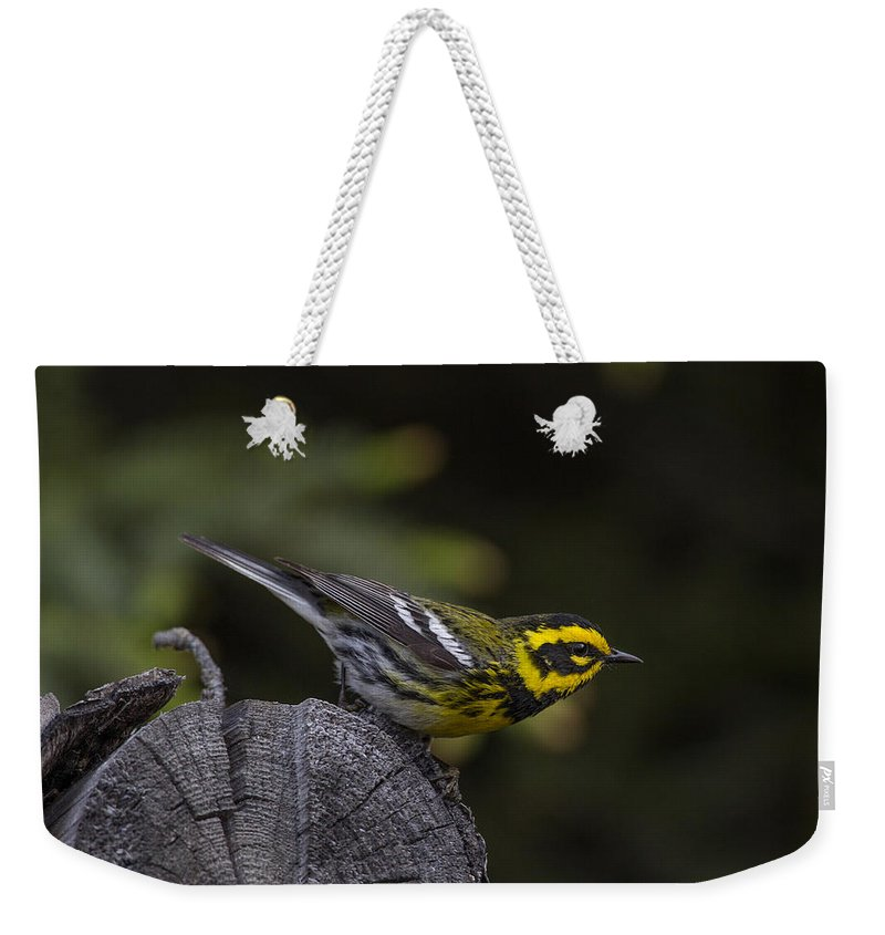 Doug Lloyd Weekender Tote Bag featuring the photograph Pre-launch by Doug Lloyd