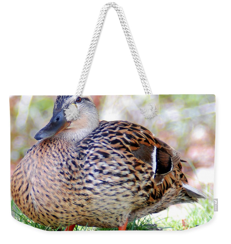 5c16f595808a7 Optical Playground By Mp Ray Weekender Tote Bag featuring the photograph Pregnant  Female Duck by Optical