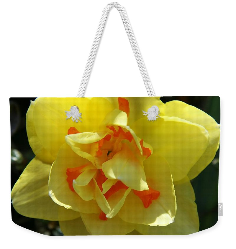 Daffodil Weekender Tote Bag featuring the photograph Pretty Face by Christiane Schulze Art And Photography