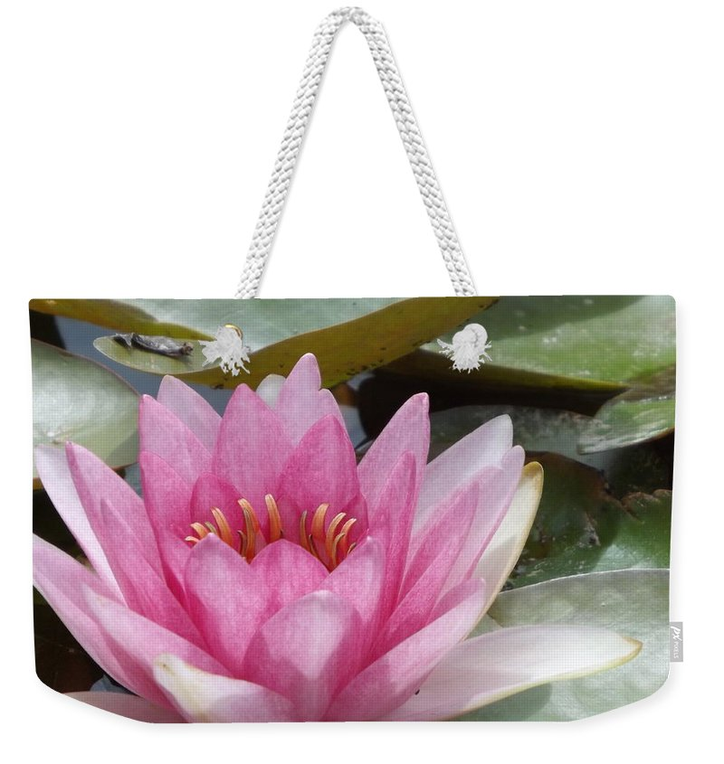 Pink Weekender Tote Bag featuring the photograph Pretty In Pink by Caryl J Bohn