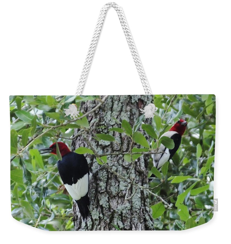 Photography Weekender Tote Bag featuring the photograph Pretty Pair Of Redheads by Lizi Beard-Ward