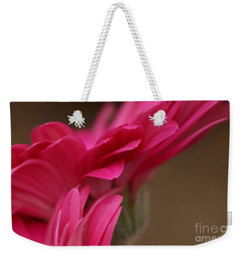 Pink Weekender Tote Bag featuring the photograph Pretty Petals by Carol Lynch