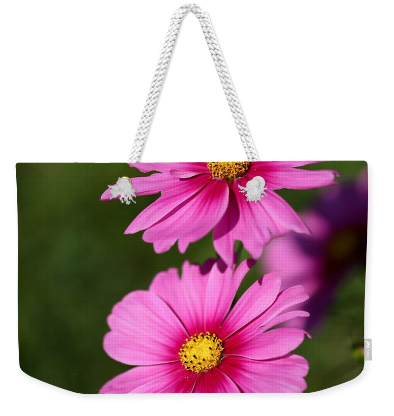 Landscape Weekender Tote Bag featuring the photograph Pretty Pink Cosmos Twins by Sabrina L Ryan