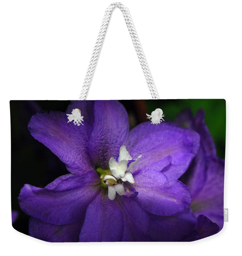 Clematis Weekender Tote Bag featuring the photograph Pretty Purple Petals by Lori Tambakis