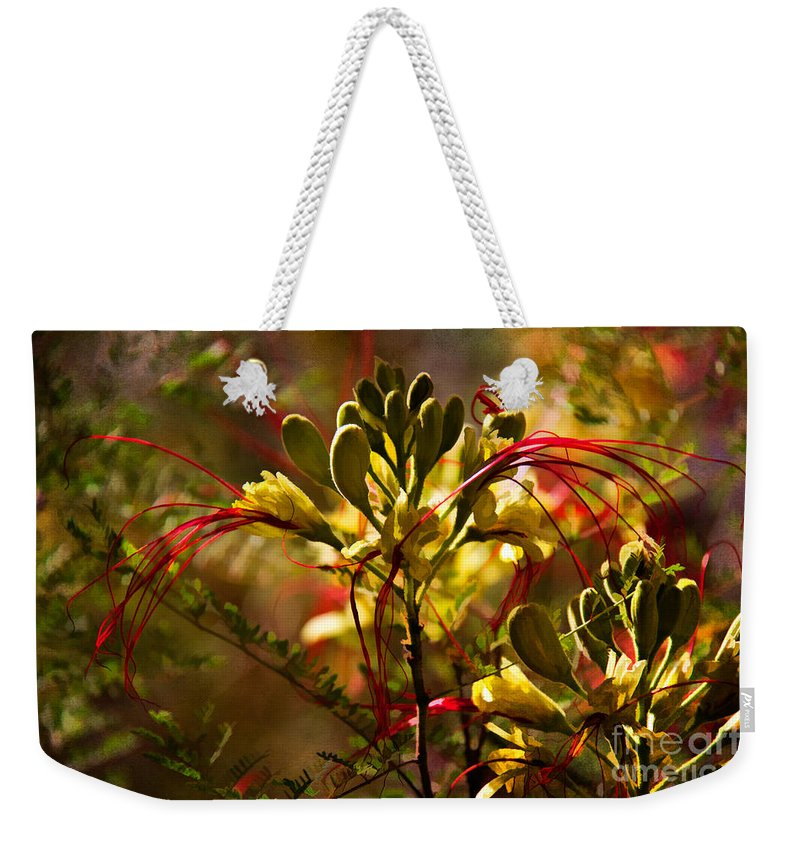 Az Weekender Tote Bag featuring the photograph Pride Of Barbados by Lana Trussell
