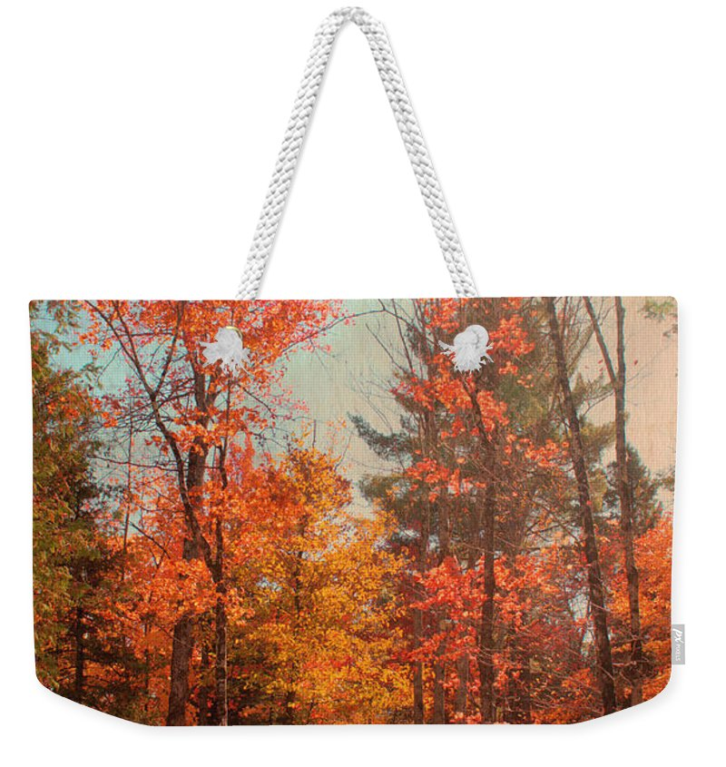 Autumn Weekender Tote Bag featuring the photograph Promenade En Foret by Aimelle
