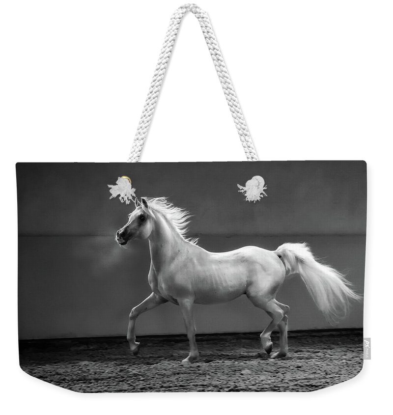 Horse Weekender Tote Bag featuring the photograph Proud Arabian Horse - Stallion In by Kerrick